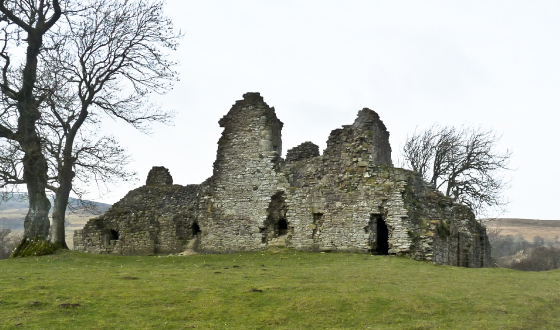 heritage pendragon